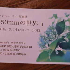 ハシモト ミホ 写真展「50mmの世界」 ついに個展やっちゃいます!!